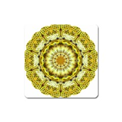 Fractal Flower Square Magnet