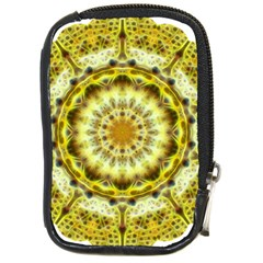 Fractal Flower Compact Camera Cases