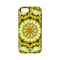 Fractal Flower Apple Iphone 5 Classic Hardshell Case (pc+silicone)