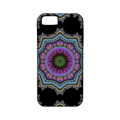 Fractal Lace Apple iPhone 5 Classic Hardshell Case (PC+Silicone)