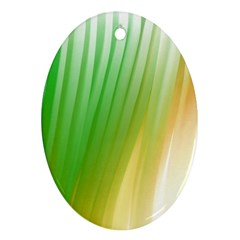 Folded Paint Texture Background Oval Ornament (Two Sides)