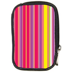Stripes Colorful Background Compact Camera Cases