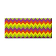 Colorful Zigzag Stripes Background Cosmetic Storage Cases