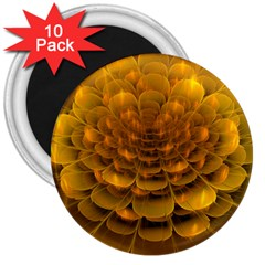 Yellow Flower 3  Magnets (10 Pack)