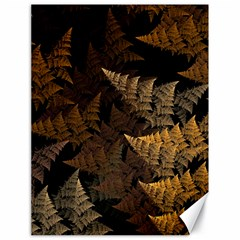 Fractal Fern Canvas 18  x 24