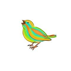 Bird Shower Curtain 48  x 72  (Small)