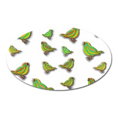 Birds Oval Magnet