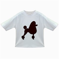 Poodle Brown Silo Infant/Toddler T-Shirts