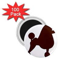 Poodle Brown Silo 1.75  Magnets (100 pack)