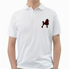 Poodle Brown Silo Golf Shirts