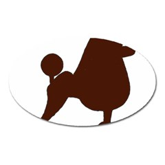 Poodle Brown Silo Oval Magnet