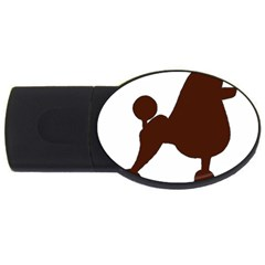 Poodle Brown Silo USB Flash Drive Oval (2 GB)