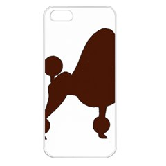 Poodle Brown Silo Apple iPhone 5 Seamless Case (White)