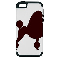 Poodle Brown Silo Apple iPhone 5 Hardshell Case (PC+Silicone)
