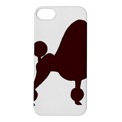 Poodle Brown Silo Apple iPhone 5S/ SE Hardshell Case