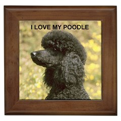 Poodle Love W Pic Black Framed Tiles