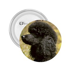 Poodle Love W Pic Black 2.25  Buttons