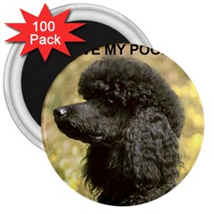 Poodle Love W Pic Black 3  Magnets (100 pack)