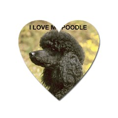 Poodle Love W Pic Black Heart Magnet