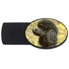 Poodle Love W Pic Black USB Flash Drive Oval (1 GB)