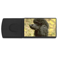 Poodle Love W Pic Black USB Flash Drive Rectangular (4 GB)