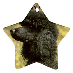 Poodle Love W Pic Black Star Ornament (Two Sides)