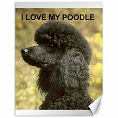 Poodle Love W Pic Black Canvas 12  x 16