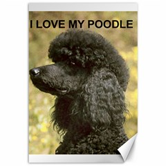 Poodle Love W Pic Black Canvas 12  x 18