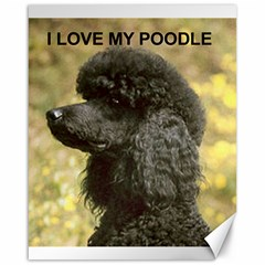 Poodle Love W Pic Black Canvas 16  x 20