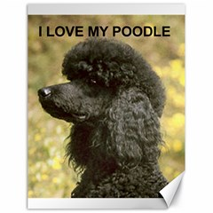 Poodle Love W Pic Black Canvas 18  x 24