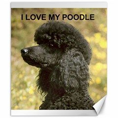 Poodle Love W Pic Black Canvas 20  x 24