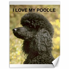 Poodle Love W Pic Black Canvas 36  x 48