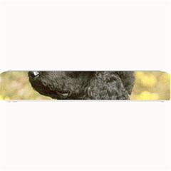 Poodle Love W Pic Black Small Bar Mats