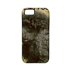 Poodle Love W Pic Black Apple iPhone 5 Classic Hardshell Case (PC+Silicone)
