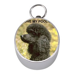 Poodle Love W Pic Black Mini Silver Compasses