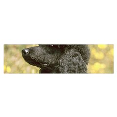 Poodle Love W Pic Black Satin Scarf (Oblong)