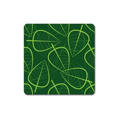 Vector Seamless Green Leaf Pattern Square Magnet