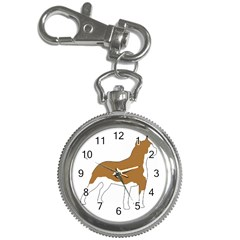 American Staffordshire Terrier  Silo Color Key Chain Watches