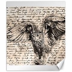 Vintage owl Canvas 20  x 24