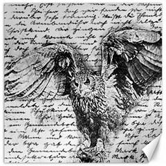 Vintage owl Canvas 20  x 20
