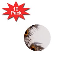 Peacock Feathery Background 1  Mini Buttons (10 Pack)