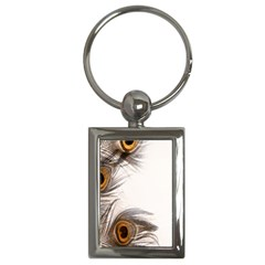Peacock Feathery Background Key Chains (rectangle)