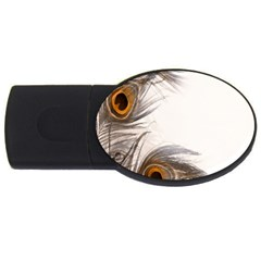 Peacock Feathery Background USB Flash Drive Oval (4 GB)