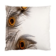 Peacock Feathery Background Standard Cushion Case (One Side)