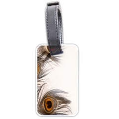Peacock Feathery Background Luggage Tags (One Side)