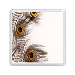 Peacock Feathery Background Memory Card Reader (square)