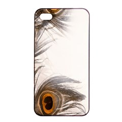 Peacock Feathery Background Apple iPhone 4/4s Seamless Case (Black)