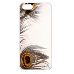 Peacock Feathery Background Apple Iphone 5 Seamless Case (white)