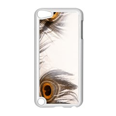 Peacock Feathery Background Apple iPod Touch 5 Case (White)