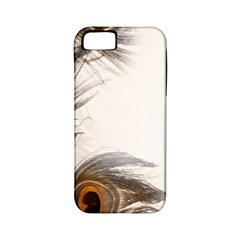 Peacock Feathery Background Apple iPhone 5 Classic Hardshell Case (PC+Silicone)